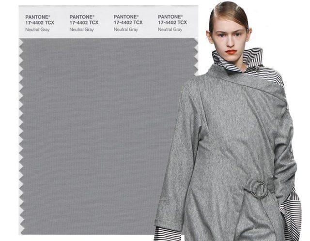 Neutral Grey .jpg